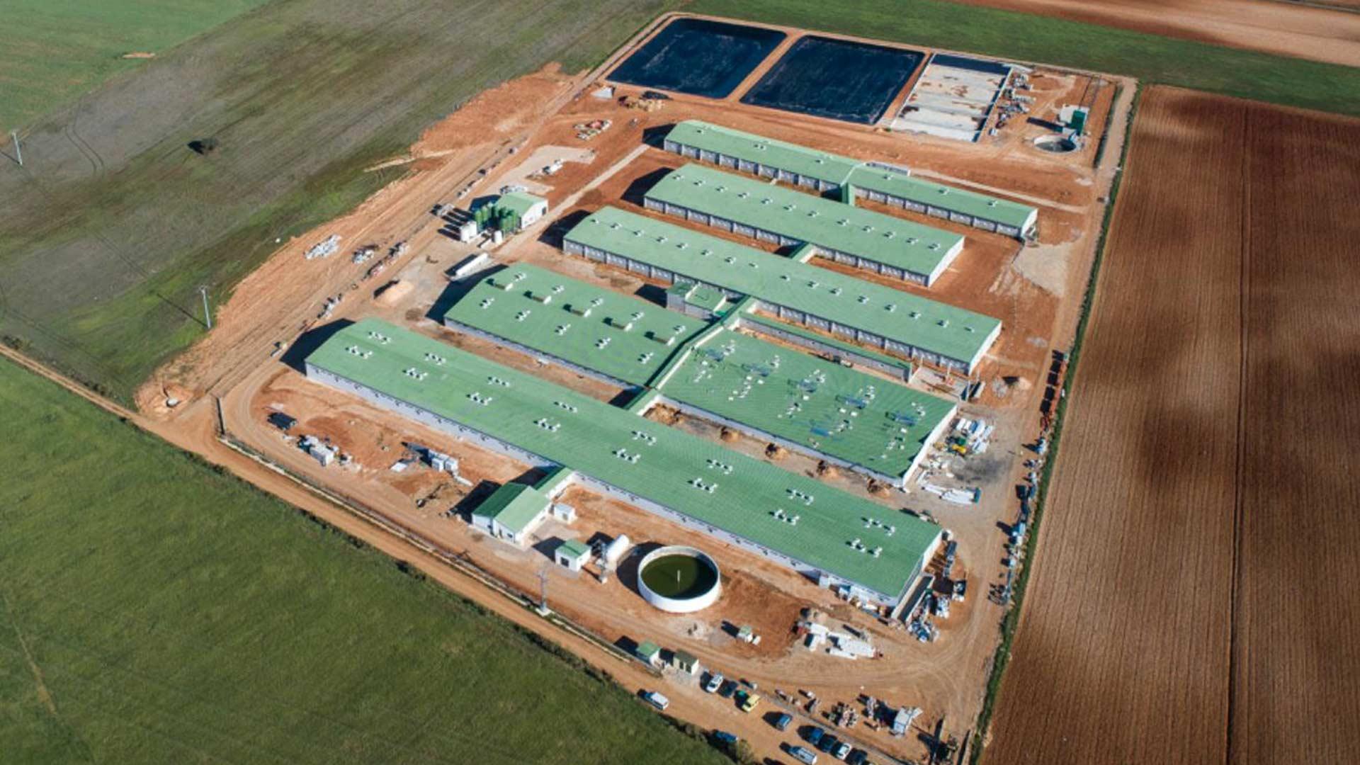Vista aérea del complejo ganadero de Jisap